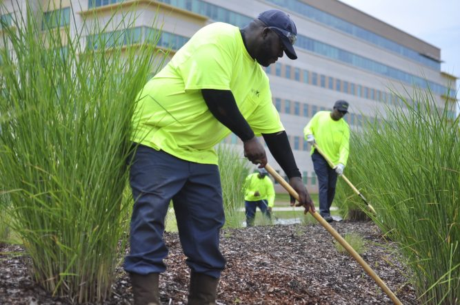 Men Providing Grounds Maintenance